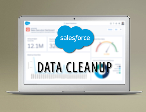 Salesforce CRM Cleanup – Removed Unnecessary Fields & Data