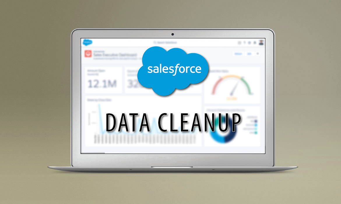 Salesforce Data Cleanup